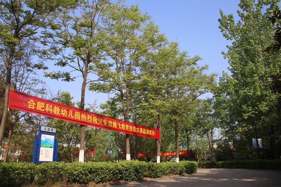 xiao园道路